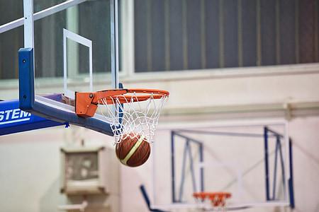 basquete, bola, desporto, jogo, equipe, jogar, cesta