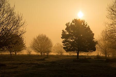 morgenstimmung, Heide, wahner pagà, Alba, boirós, boira, boira