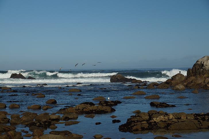 tôi à?, những con sóng, Ngày Lễ, đường chân trời, hòa bình của tâm