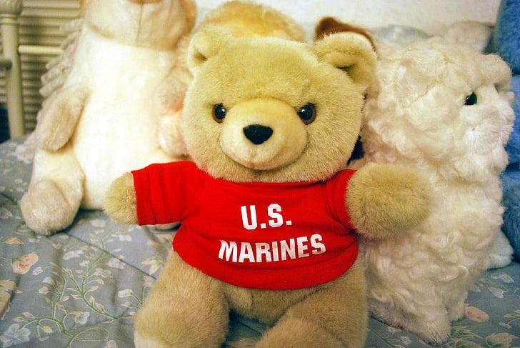 medvjed, marinac, igračka, životinja, punjena, pliš