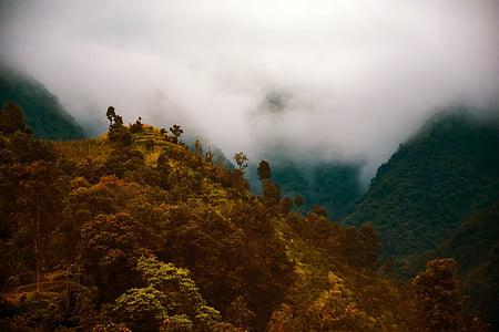Nepal, Alba, matí, boira, boira, boira, muntanyes