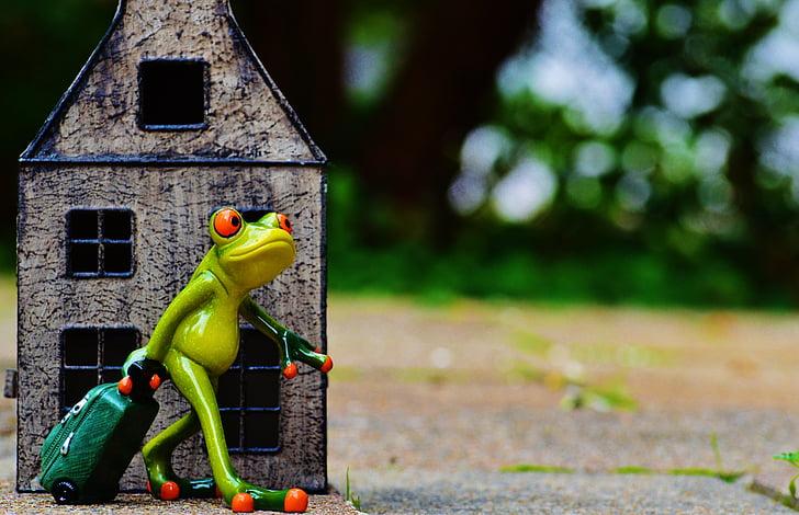 hora d'anar, comiat, viatges, granota, equipatge, figura, valent