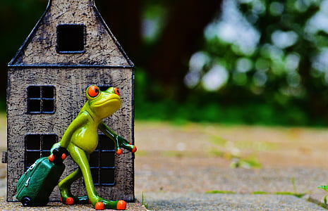 time to go, farewell, travel, frog, luggage, figure, cute