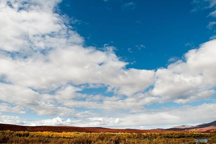 paisatge, escèniques, natura, desert, a l'exterior, riu salvatge, Denali