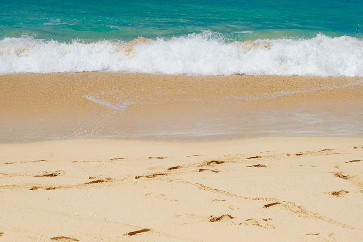 пляж, океан, пісок, море, берег моря, води, хвиля