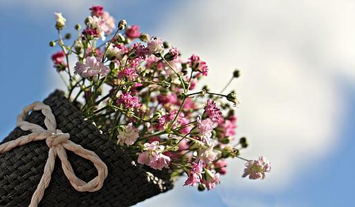 bossa gypsofilia llavors, Gypsophila, bossa, flor ornamental, planta ornamental, flors, natura