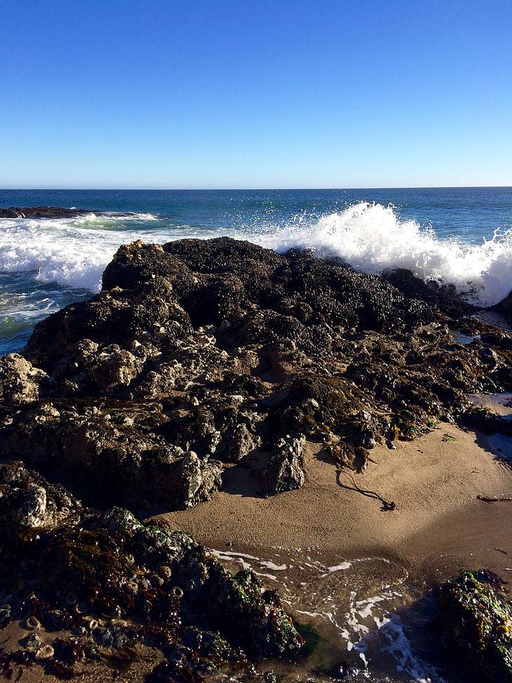 ocean waves, rock, coast, nature, wave, seaside