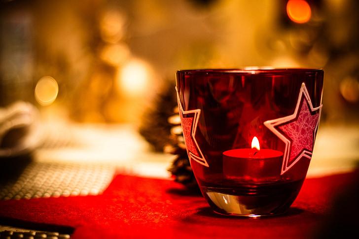 คริสมาสต์, ต้นคริสต์มาส, สีเขียว, พื้นหลัง, อวยพรวันคริสต์มาส, คริสมาสต์เด่น, หิมะ