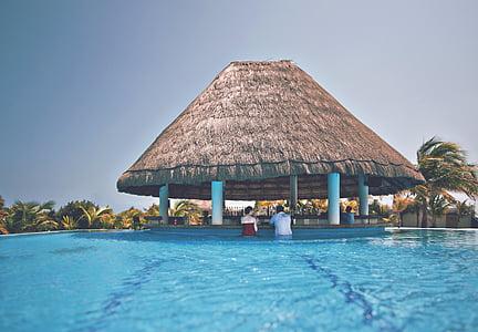 Bar, paar, Hütte, Pool, Resort, Schwimmbad, Bäume