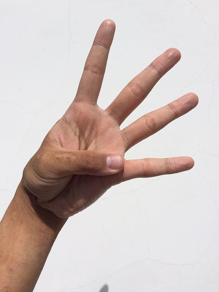dlan, ruku, prst, nokat, Mladi, japanski, ljudi