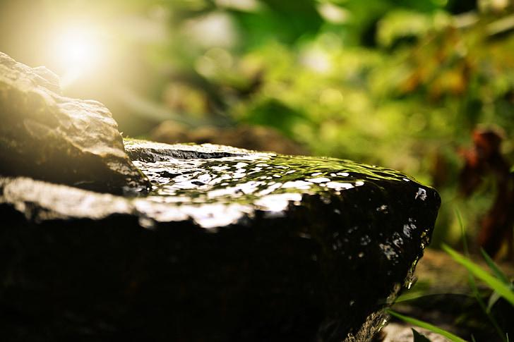 vandens, Zen, poilsis, sveikatos, sveikatingumo, SPA, Meditacija