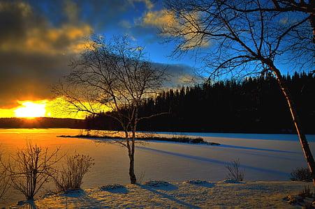 paisatge d'hivern, posta de sol, arbres, nit, neu, contra el dia, cel