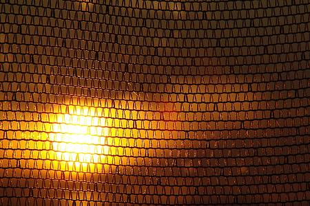 Sonnenuntergang, Orange Sonne, Sonne, Mesh, Strahlen der Sonne, Licht, Orange