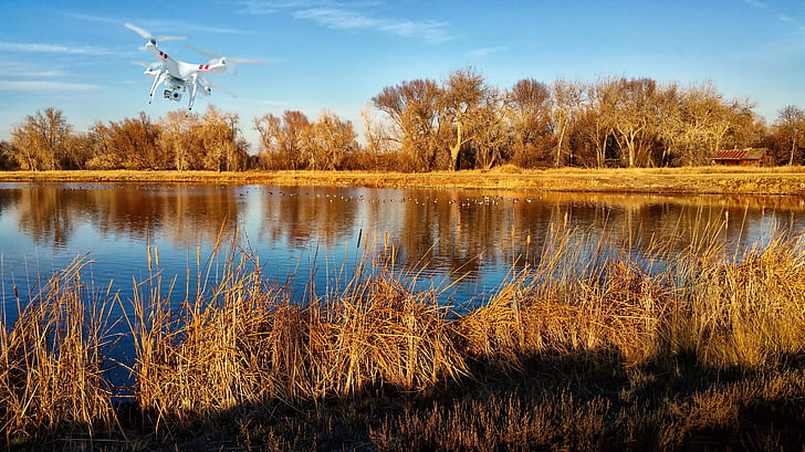 aerial, aerial photography, aerial video, cattails, drone, drone video, fall