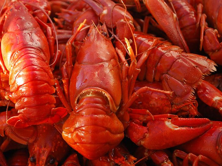 vėžiai, maisto, jūros gėrybės, letena, šviežios