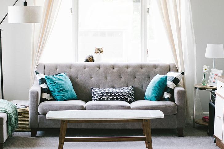namas, interjeras, sofos, sofos, pagalvė, langas, stiklo