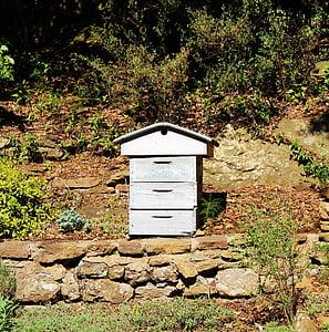 rusc, l'apicultura, jardí, rusc blau, apicultor, rusc, abella