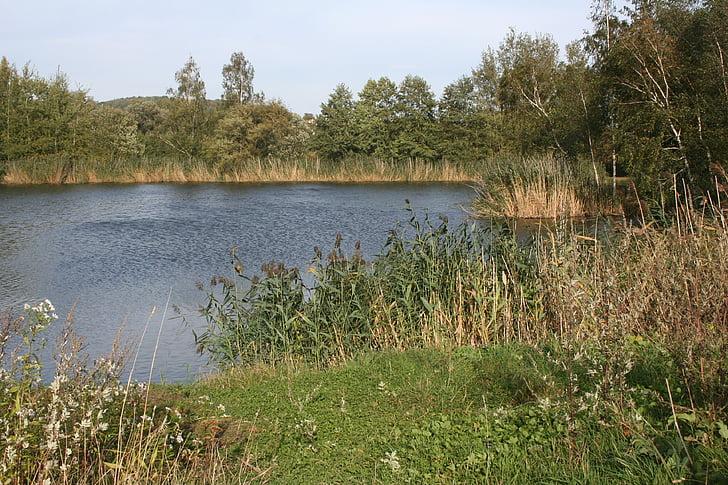 lake, autumn mood, walk