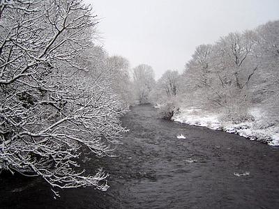 talvistel, Jõuluootus, lumi, jää, loodus, puud, jõe maastik