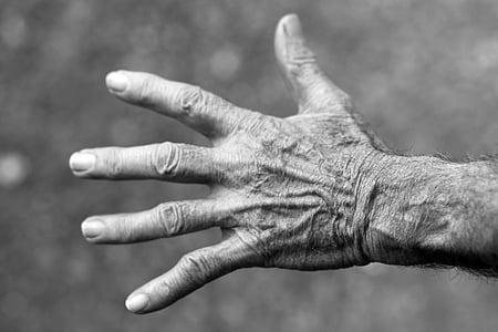 kéz, idős asszony, ráncok, emberi kéz, idősebb felnőtt, emberi ujj, fekete-fehér