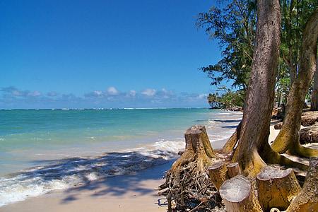 platja, platja de sorra, belles platges, vacances, Hawaii