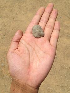 mà, pedra, sorra, sorral, Palma, dit, jove
