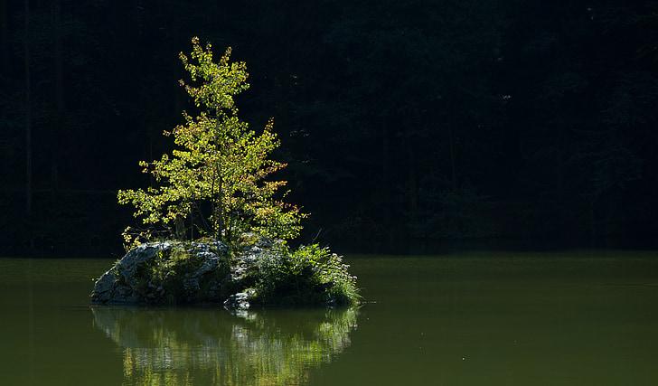 lake, tyrol, back light, landscape, bergsee, austria, water