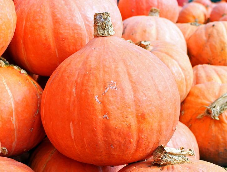 ķirbji, Hokkaido, rudens, oktobris, ražas, dārzeņi, oranža