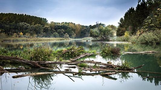 river, the danube, fog, reflection, slovakia, nature, trees