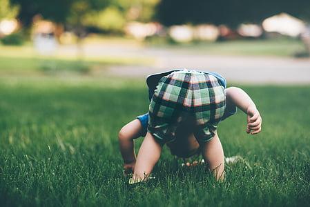 persones, nen, nen, jugar, herba, verd, natura