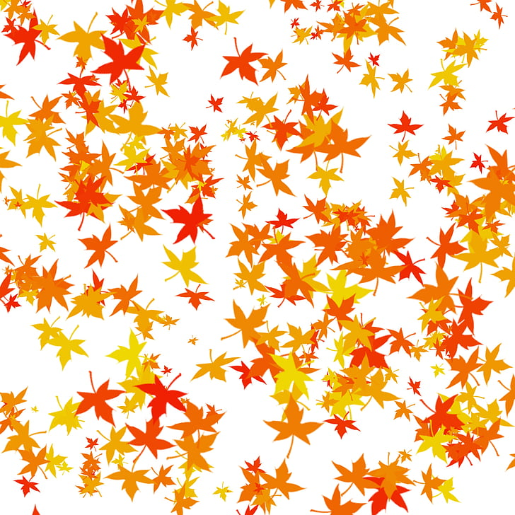 leaves, autumn, dried leaves, leaf, nature, backgrounds, gold colored