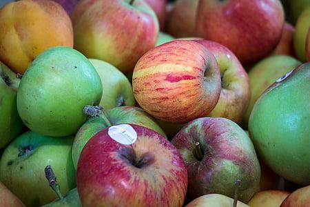 яблоко, фрукты, День благодарения, урожай, фрукты, Осень, Фриш