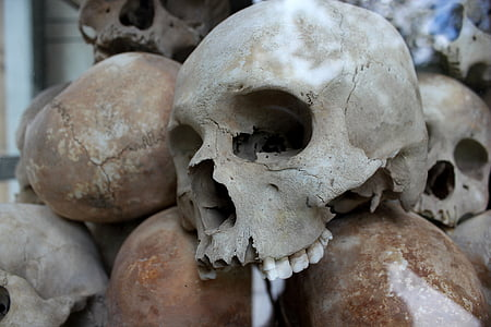 skulls, genocide, murder, death, human, cambodia, holocaust