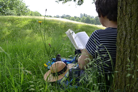 book reading, book, reading, read, literature, summer, nature