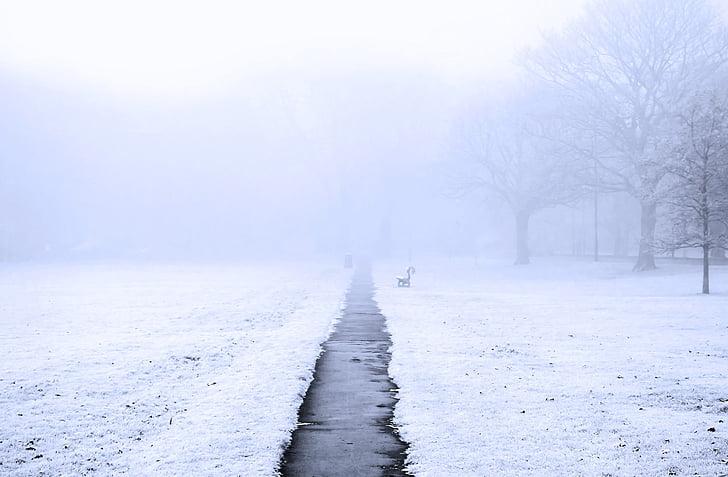 england, seasons, mist, park, sidewalk, grass, frost