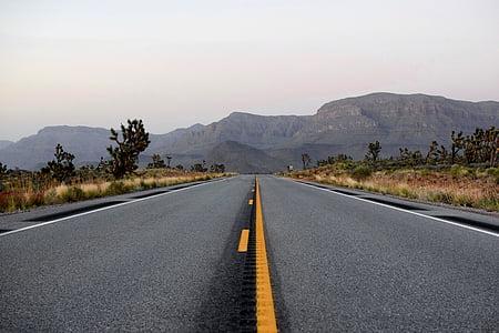 carretera, viatges, aventura, herba, arbres, plantes, muntanya