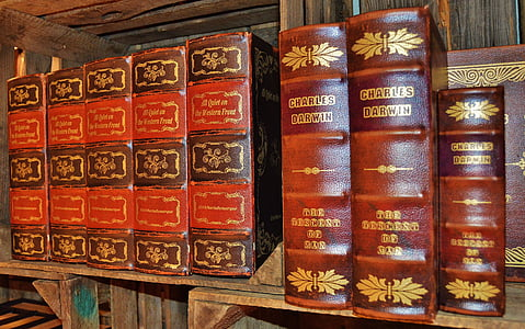 books, antiquariat, leather covers, old, box, spine, brown