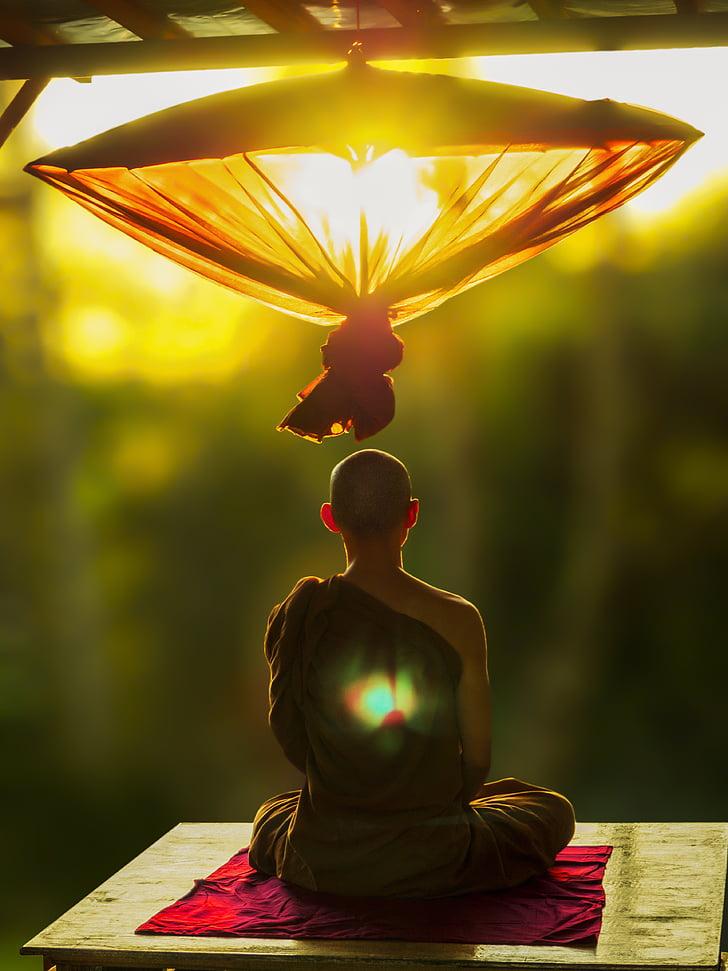 Theravada budisme, meditar, paraigua, monjo meditant, Theravada, budisme, meditació