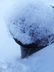 neu, flocs de neu, gran, l'hivern, textura