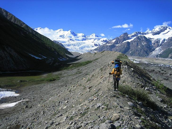 motxiller, Senderisme, morena glacial, Wrangell-st elias, Parc i reserva nacionals, Alaska, EUA