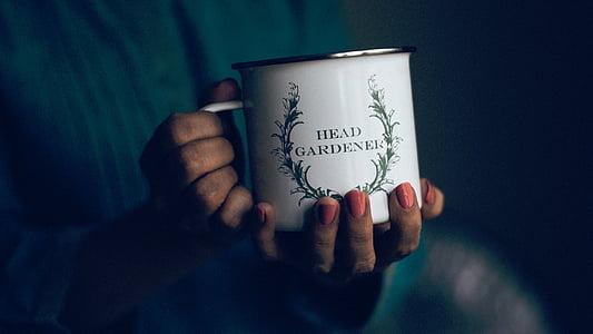 mug, people, nails, woman, hands, lady, human Hand