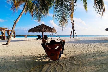 Sakin ol, Palm, cennet, kum, Resort, plaj, seyahat