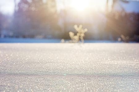 flocs de neu, neu, bokeh, neu bokeh, l'hivern, natura, fred