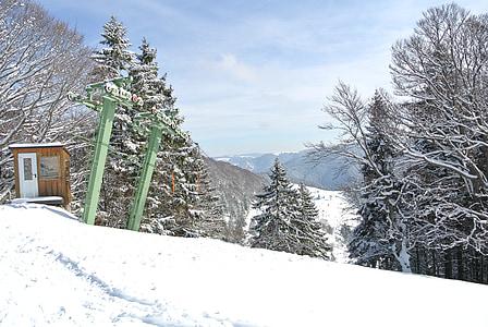 địa danh Schauinsland, tuyết, Ski lift, rừng, rừng đen, Đức, mùa đông