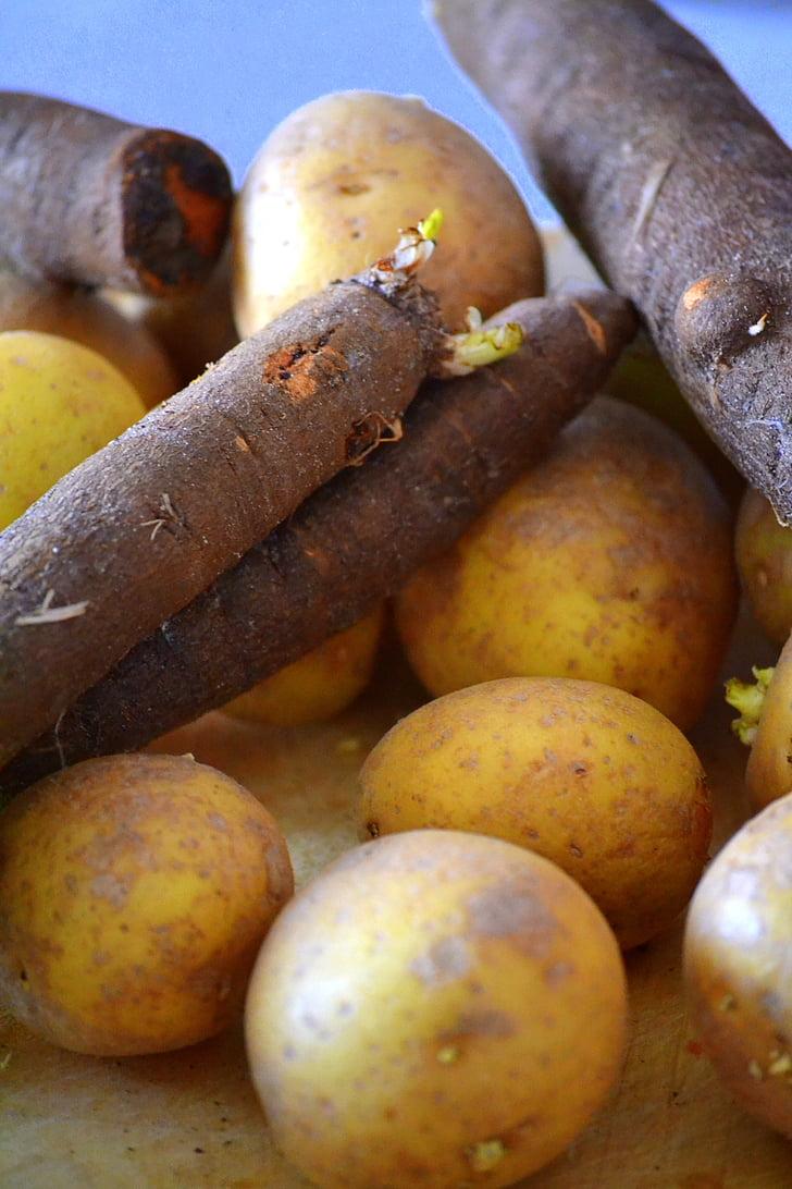 patata, Tragopogon, verdures, aliments, menjar, crua, vitamines