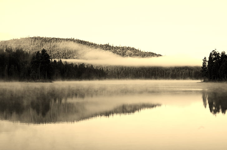 lake, fog, symmetry
