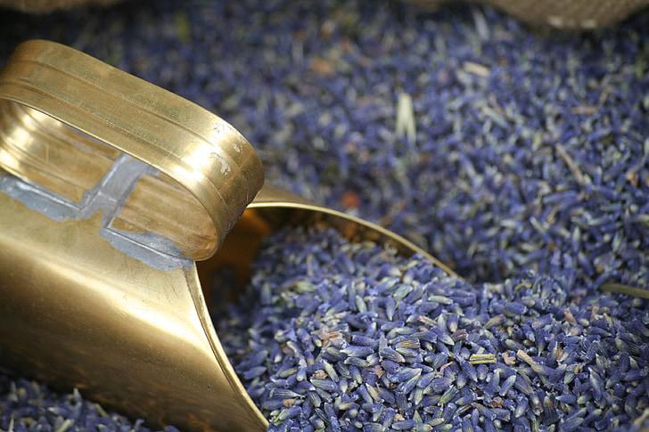 Lavendel, Provence, Prantsusmaa, taim, seemne, toidu, orgaaniliste