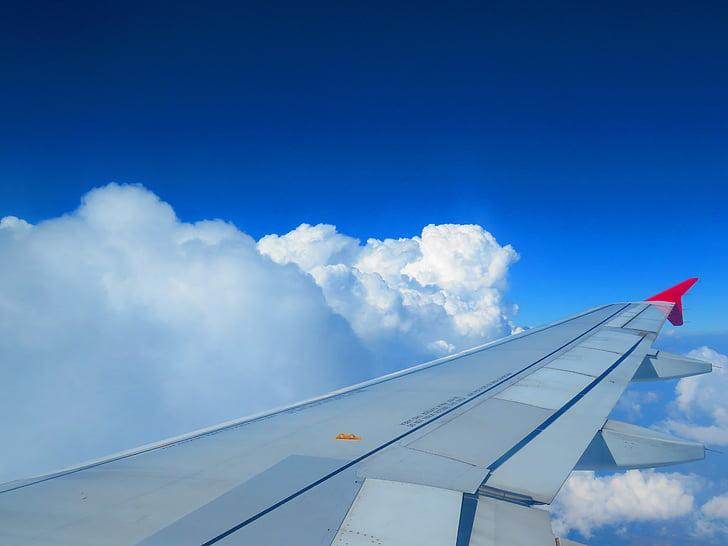 taivas, kone, pilvet, sininen, sininen taivas, siipi