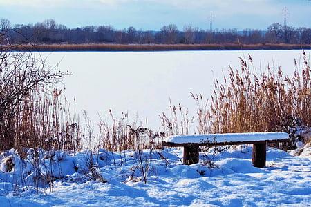 maisema, Lake, jäädytetty, pankki, talvi näyttökerrat, Talvinen, lumi