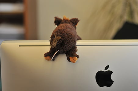 screen, apple, logo, mac, stuffed animal, imac, office